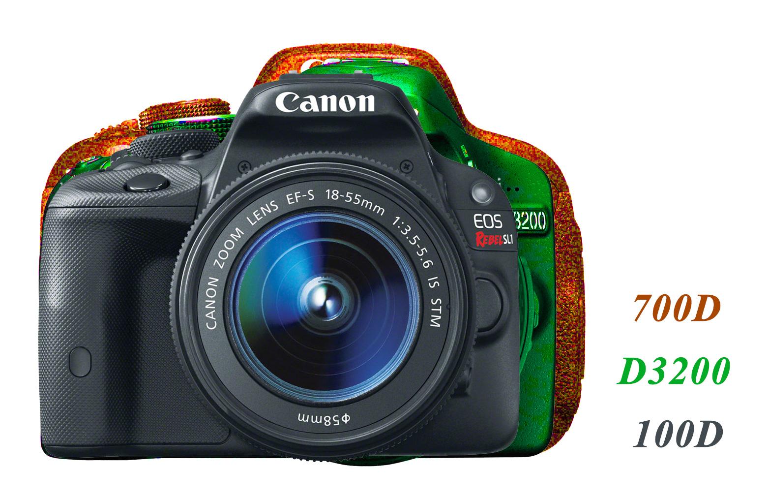 Canon vs Nikon Photo Comparison