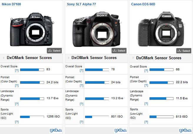 Nikon_D7100_comparison1
