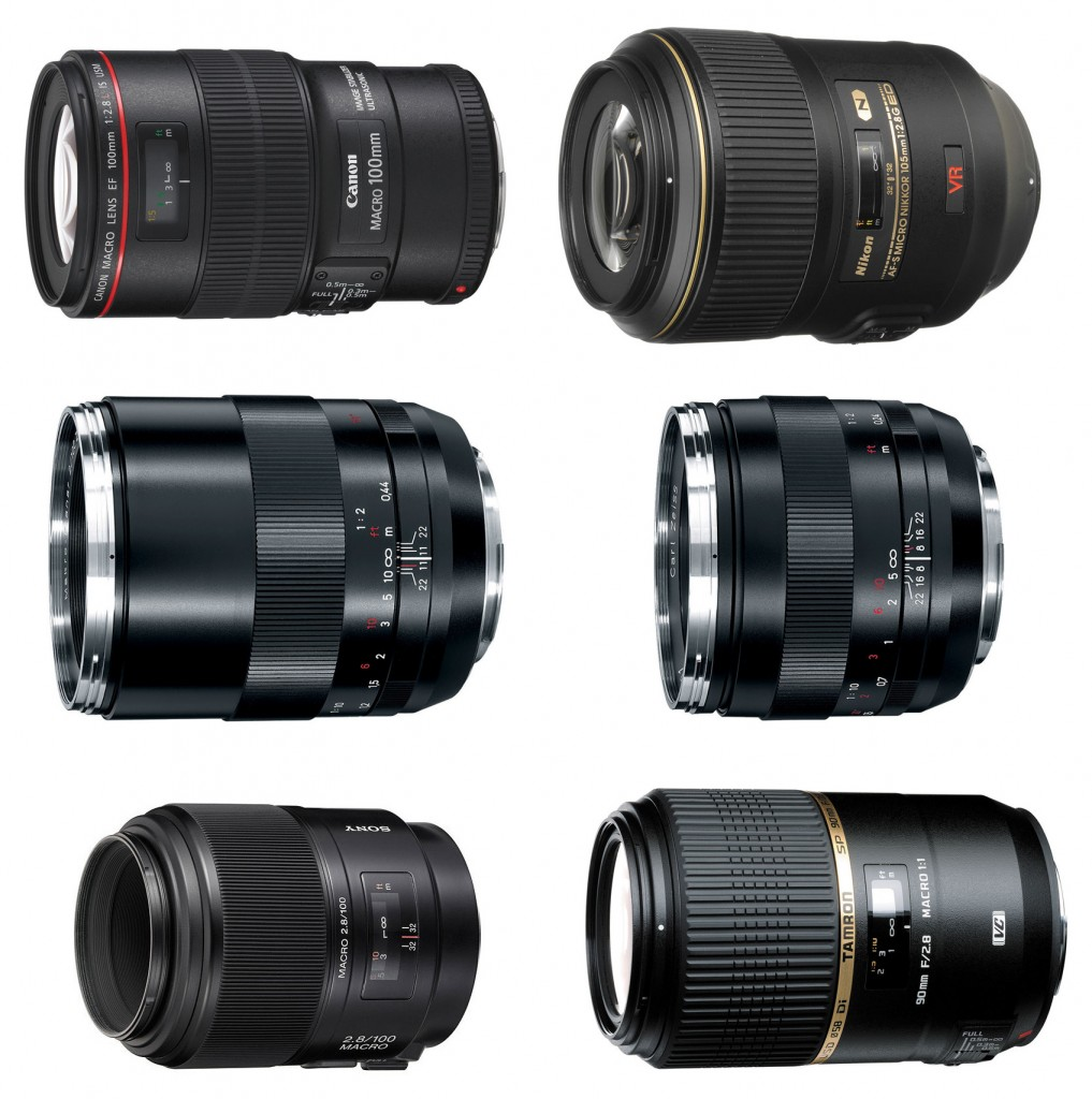 Recommended Macro Lenses for Canon Nikon Sony