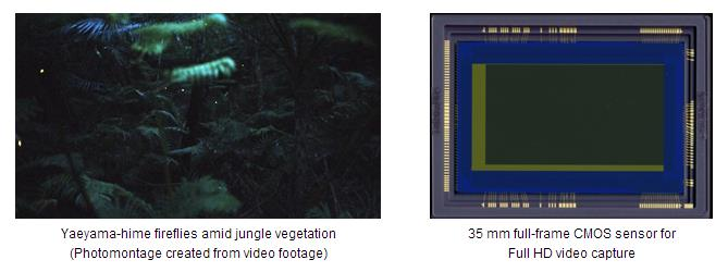 35mm full frame sensor