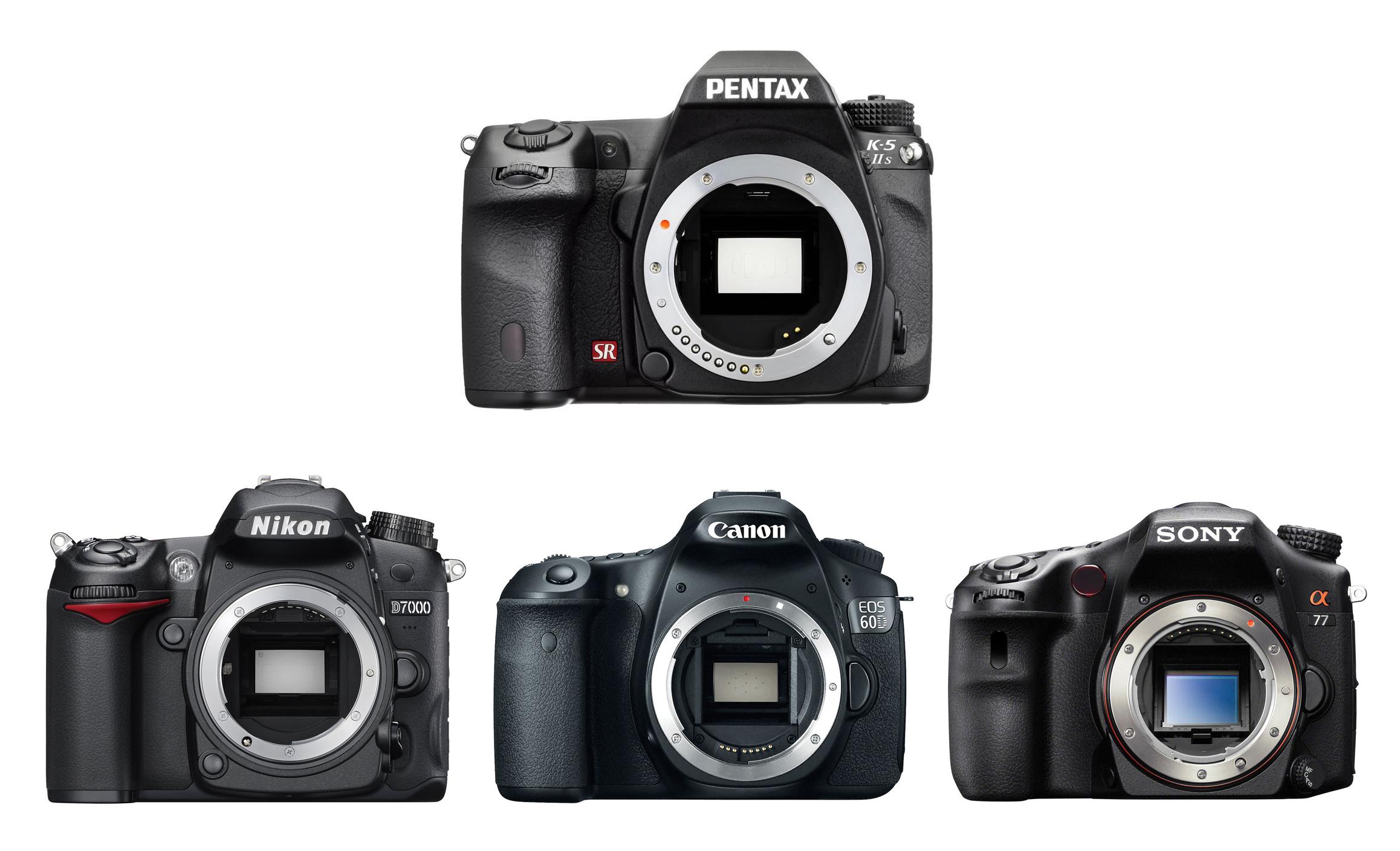 Best DSLR Cameras Under $1,000