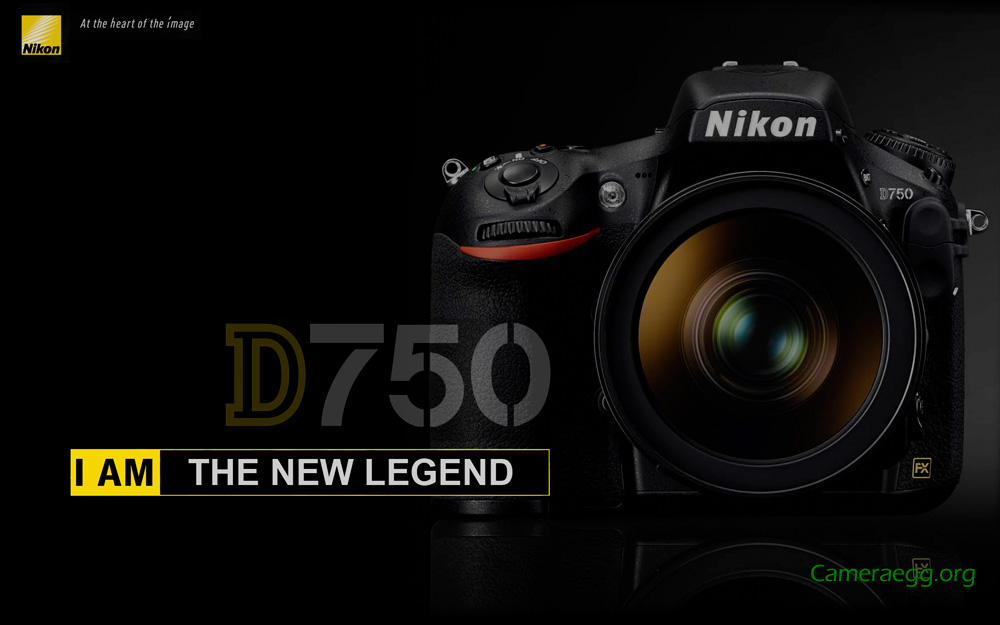 Nikon D750 Rumors Roundup To Be Announced On September 11th