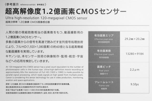 canon 120mp sensor