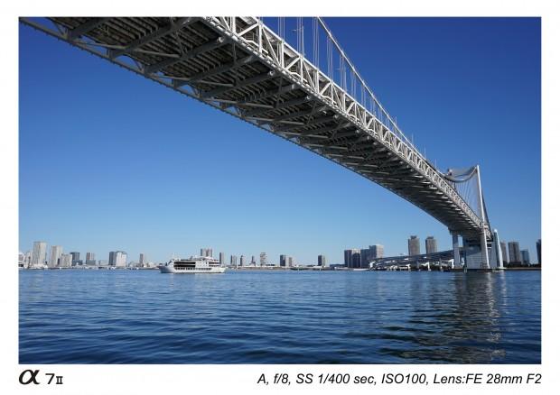 sony fe 28mm f2 lens sample images 1