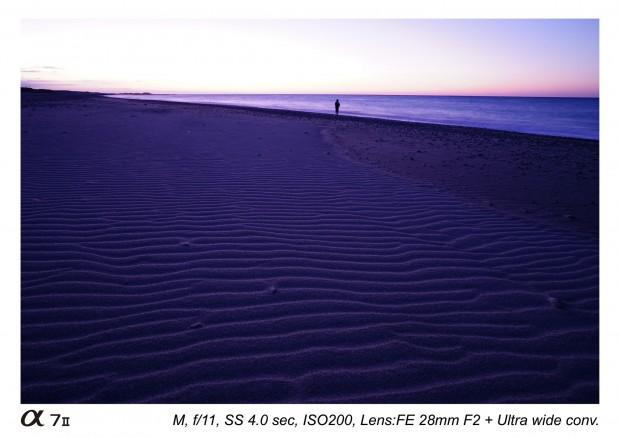 sony fe 28mm f2 lens sample images 4