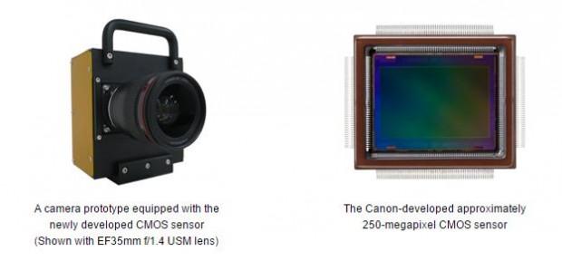 canon 250 m sensor