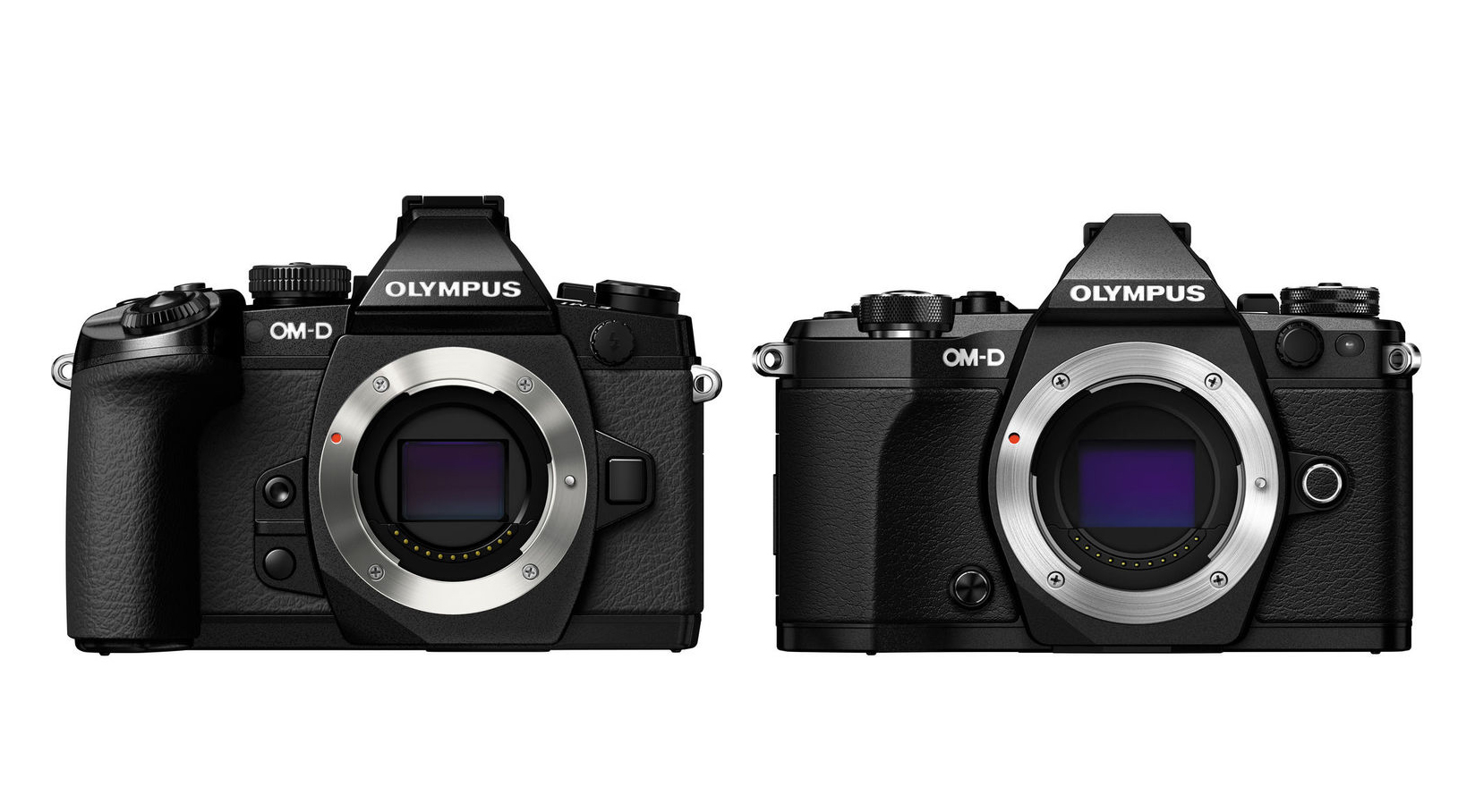 olympus om d e m5 mark ii camera news at cameraegg. Black Bedroom Furniture Sets. Home Design Ideas