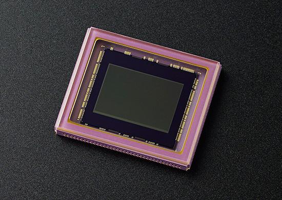 Nikon-1-J5-1-inch-sensor