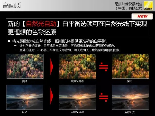 nikon d850 how to get 30 fps
