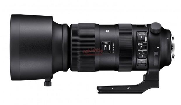 sigma 60-600mm lens 1