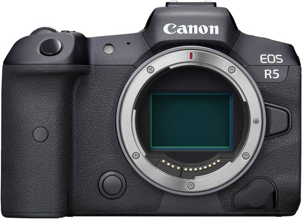 Canon EOS R5 : the Best Selling in the First Half of February (CAPA)